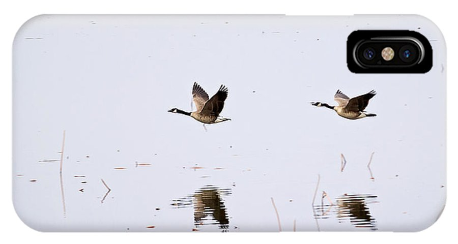 Geese IPhone X Case featuring the photograph Geese Reflections by Deb Buchanan