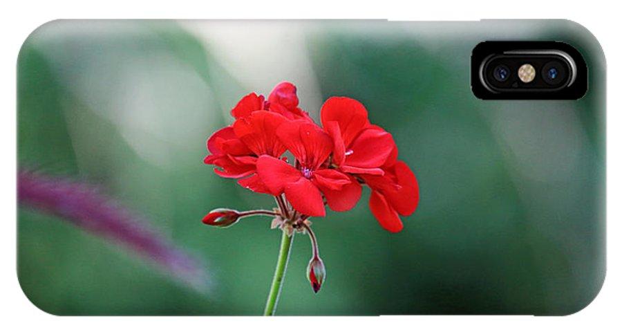 Geranium IPhone X Case featuring the photograph Geranium by PJQandFriends Photography