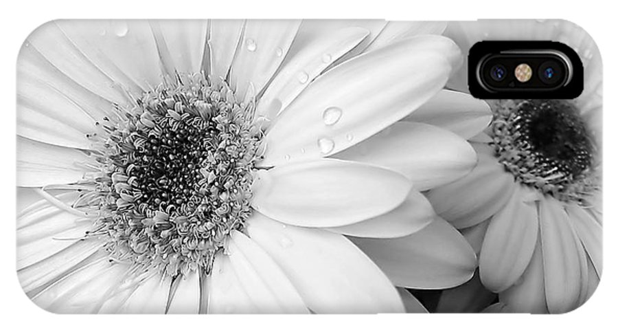Daisy IPhone X Case featuring the photograph Gerber Daisies In Black And White by Jennie Marie Schell