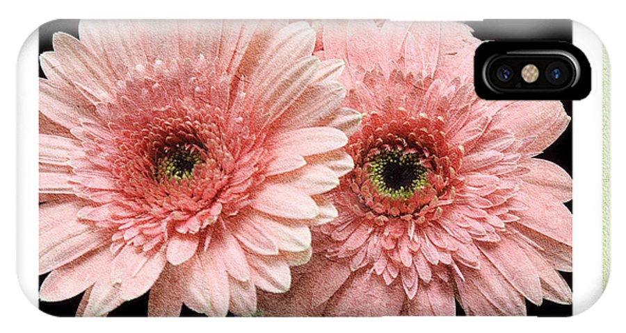 Gerber IPhone X Case featuring the photograph Gerber Daisy Peace 4 by Andee Design