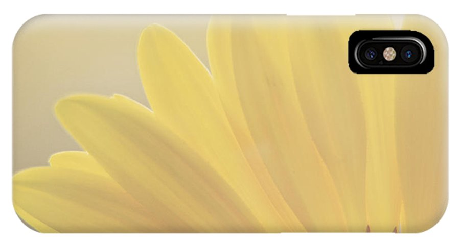 Gerbera Daisy IPhone X Case featuring the photograph Gerbera Daisy-yellow by Jessie Gould