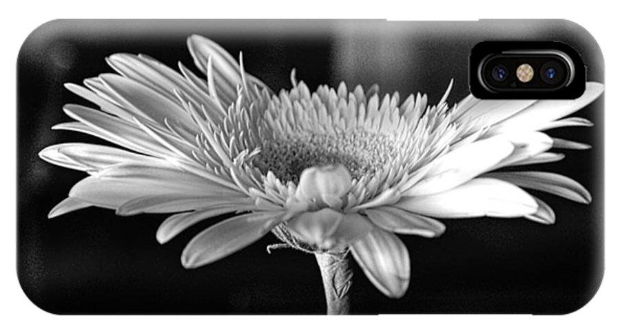 Black And White IPhone X Case featuring the photograph Gerbera II by Emily Sparks