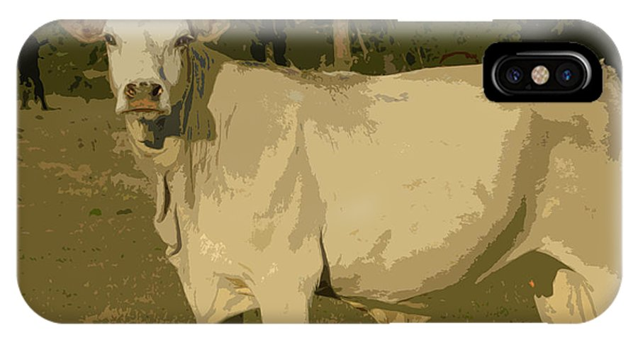 Cow IPhone X Case featuring the photograph Ghost Cow 2 by George Pedro