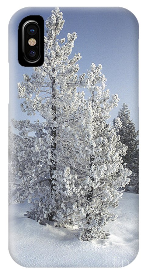 Yellowstone IPhone X Case featuring the photograph Ghost Trees Of Yellowstone by Sandra Bronstein