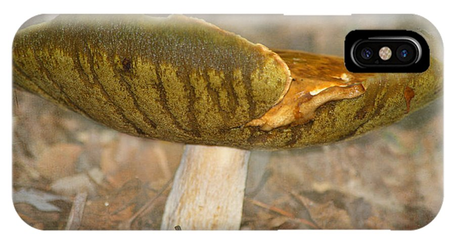 Mushroom IPhone X Case featuring the photograph Giant Mushroom by Linda Segerson