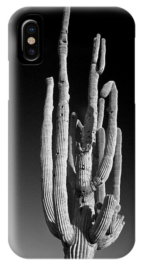 Giant IPhone X Case featuring the photograph Giant Saguaro Cactus Portrait In Black And White by James BO Insogna