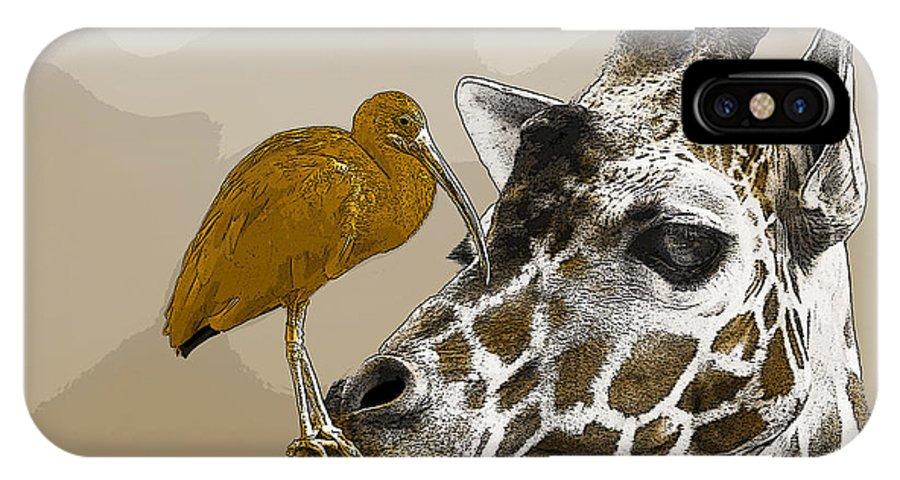 Giraffe IPhone X Case featuring the photograph Giraffe And Friend by Robert Schwarztrauber