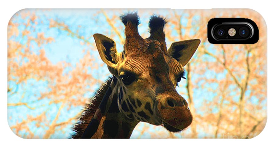 Giraffe IPhone X Case featuring the photograph Giraffe by Frank Larkin