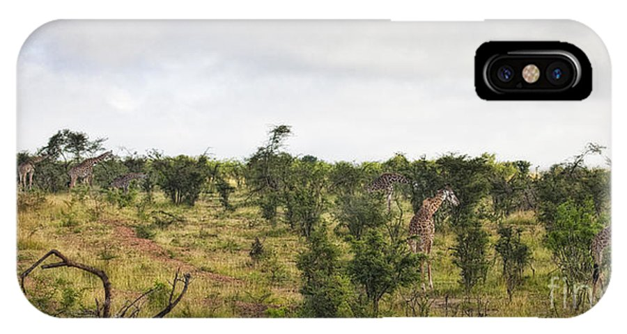 Africa IPhone X Case featuring the photograph Giraffe Panorama by Timothy Hacker