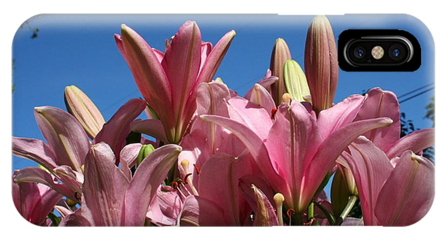 Pink IPhone X Case featuring the photograph Glorious Lilies by Teresa French