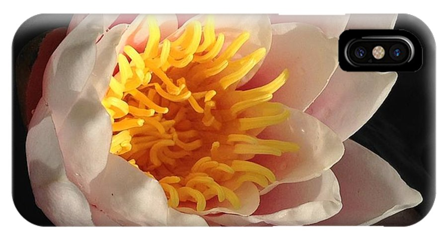 Water Lily IPhone X / XS Case featuring the photograph Glorious Lily by Kate Gibson Oswald
