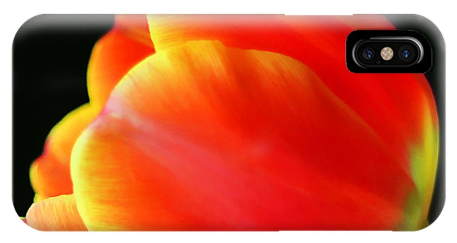 Background IPhone X Case featuring the photograph Glowing Tulip by Darren Fisher