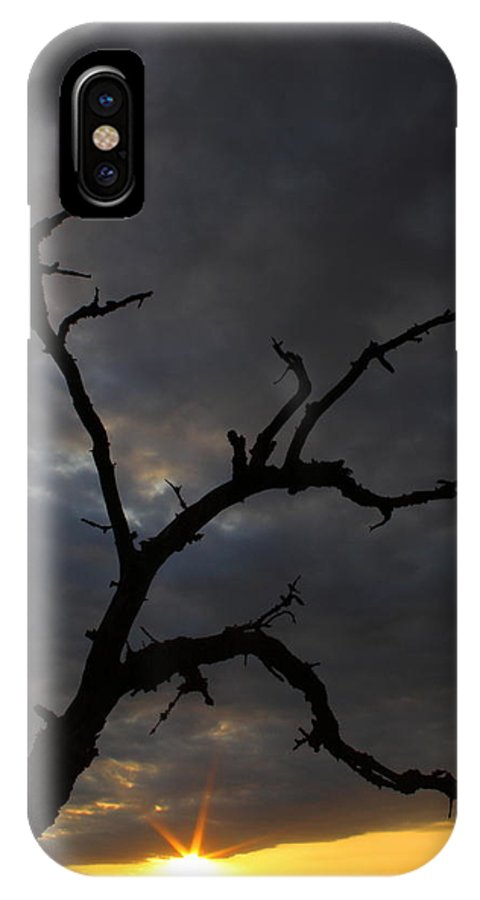 Texas IPhone X Case featuring the photograph Gnarly by Andrew McInnes