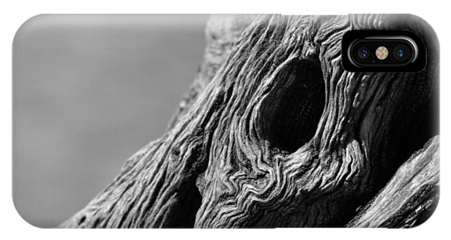 Bark IPhone X Case featuring the photograph Gnarly Tree II by Michael McGowan