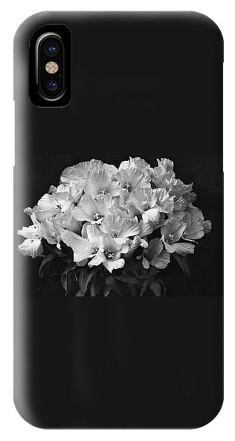Flowers IPhone X Case featuring the photograph Godetia Wild Roses by Reginald A. Malby