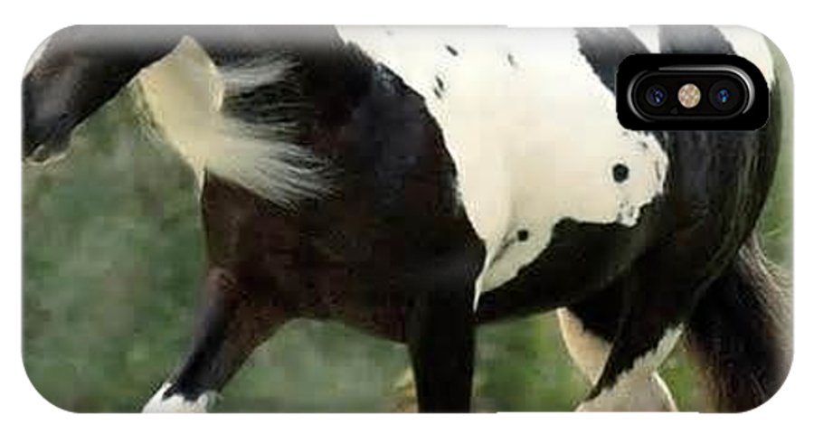 Horse IPhone X / XS Case featuring the photograph God's Beauty by Lisa Cox