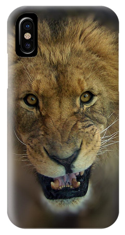 Animals IPhone X Case featuring the photograph Going To Get You by Ernie Echols