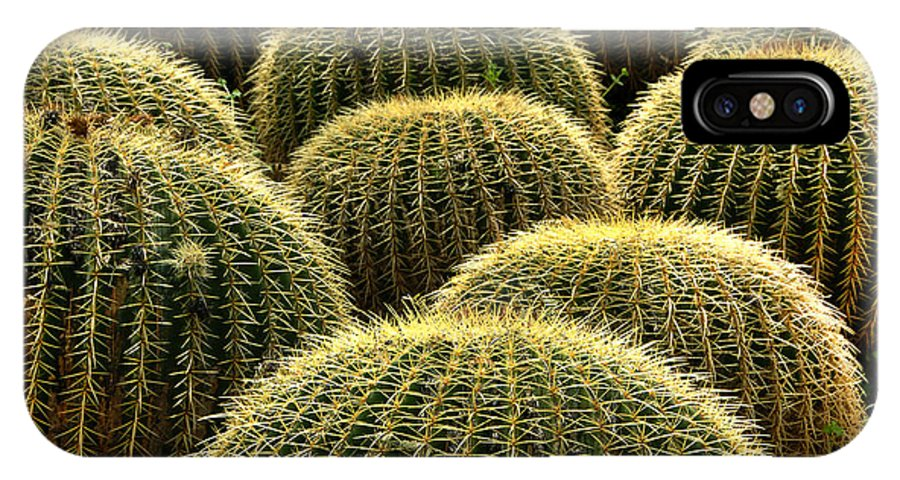 Plant IPhone X Case featuring the photograph Golden Barrel Cactus by Howard Koby