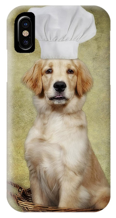 Animals IPhone X Case featuring the photograph Golden Chef by Susan Candelario