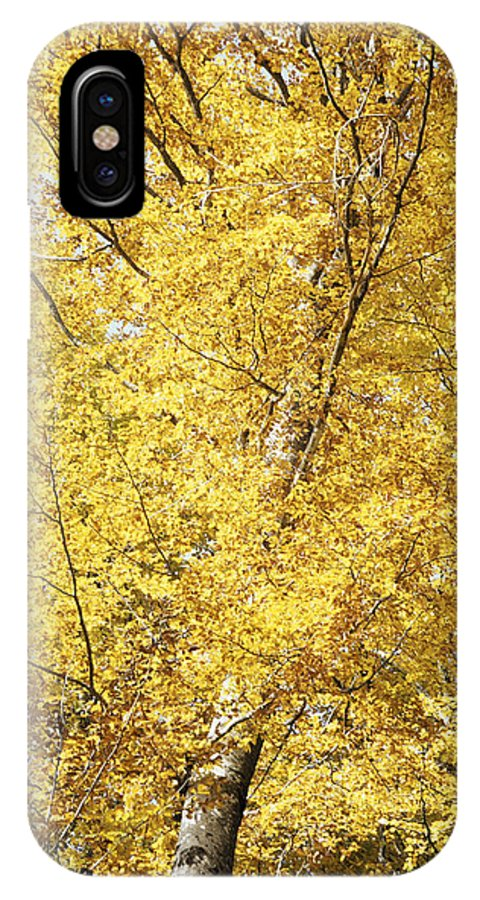 Nature IPhone X Case featuring the photograph Golden Foliage by Patrick Kessler