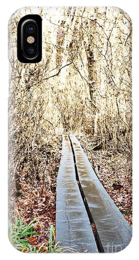 Landscape IPhone X Case featuring the photograph Golden Forest by K Hines