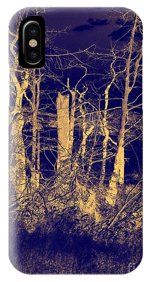 Landscape IPhone X Case featuring the photograph Golden Forest by Mickey Harkins
