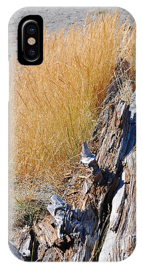 Mount St Helens IPhone X Case featuring the photograph Golden Grass by Connie Fox