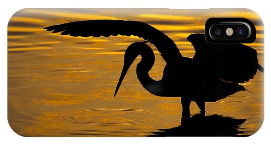 Heron IPhone X Case featuring the photograph Golden Sunset by Ben Dickmann