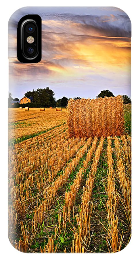 Farm IPhone X Case featuring the photograph Golden Sunset Over Farm Field In Ontario by Elena Elisseeva