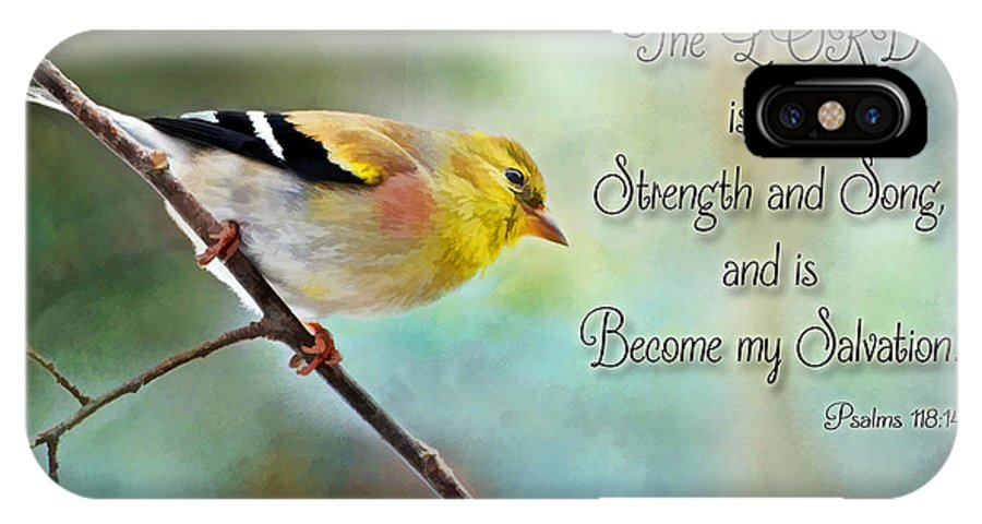 Yellow IPhone X Case featuring the photograph Goldfinch With Rosy Shoulder - Digital Paint And Verse by Debbie Portwood