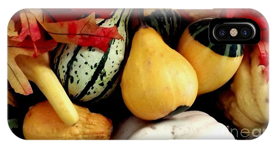Gourd IPhone X Case featuring the photograph Gourd Group Of Fall's Bounty by Gail Matthews