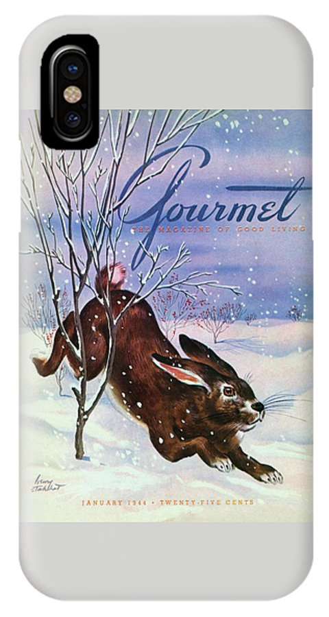 Illustration IPhone X Case featuring the photograph Gourmet Cover Of A Rabbit On Snow by Henry Stahlhut