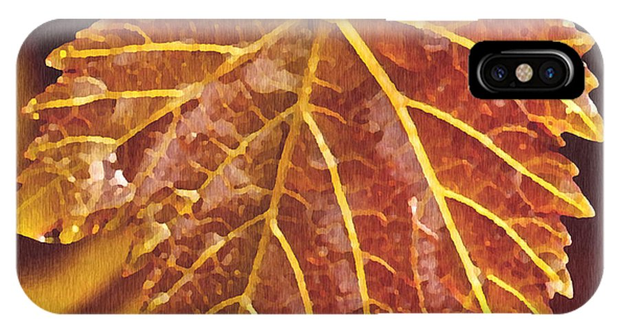Red Grape Leaf IPhone X Case featuring the painting Grapevine In Fall by Artist and Photographer Laura Wrede