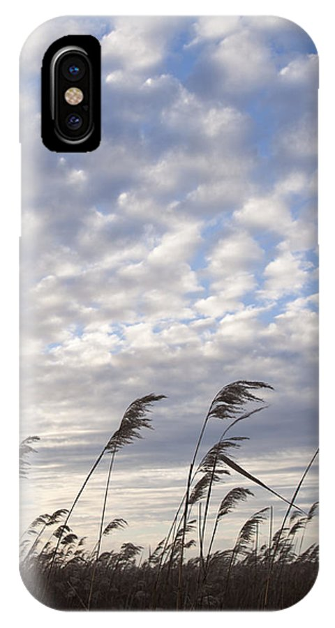 Landscape IPhone X Case featuring the photograph Grass by Lindsey Weimer