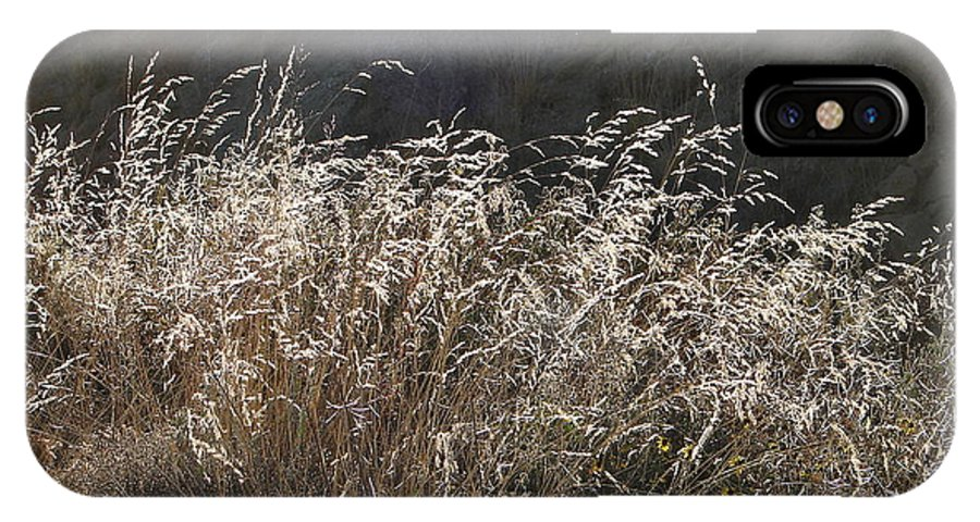 Grass IPhone X Case featuring the photograph Grassy Knoll by Lew Davis