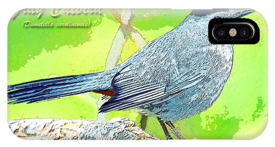Biology IPhone X / XS Case featuring the photograph Gray Catbird Digital Art by A Gurmankin