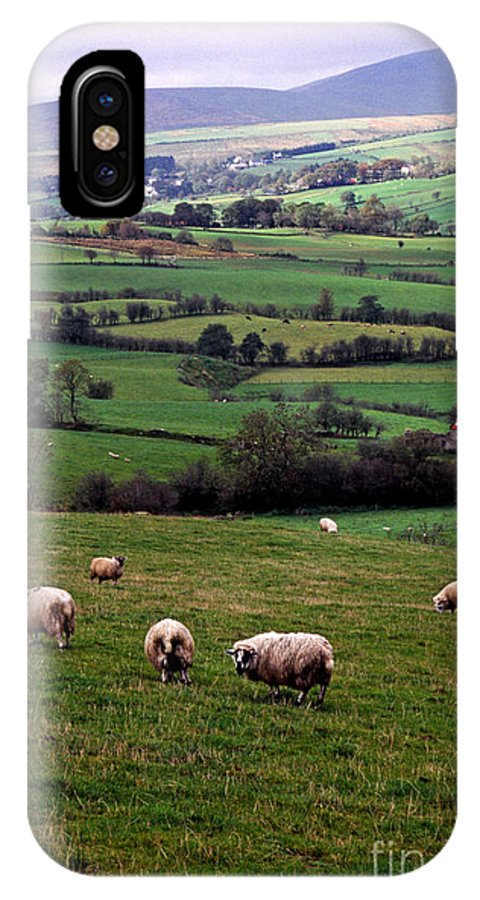 Northern Ireland IPhone X Case featuring the photograph Grazing Sheep In Green Fields by Thomas R Fletcher