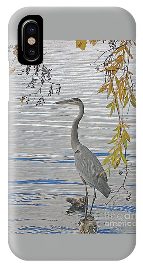 Heron IPhone Case featuring the photograph Great Blue Heron by Ann Horn