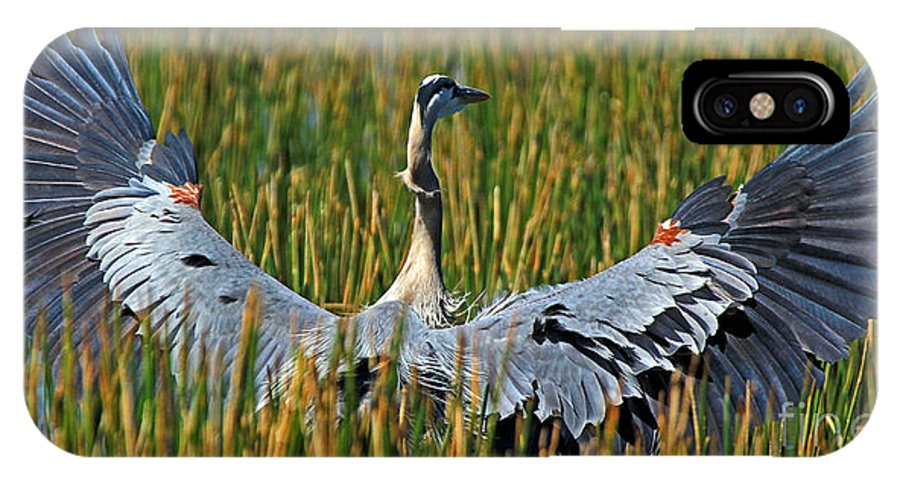 Great Blue Heron IPhone X Case featuring the photograph Great Blue Heron Landing by Larry Nieland