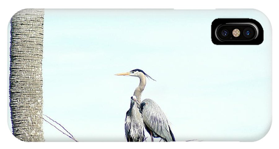 Wild IPhone X Case featuring the photograph Great Blue Heron Love Two by Walter Rickard