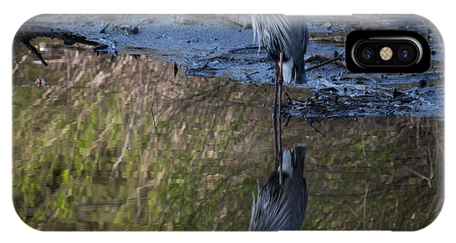 IPhone X Case featuring the photograph Great Blue Heron Reflection by Ron Maxie