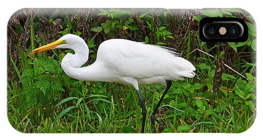 Sanibel 2 IPhone X Case featuring the photograph Great Egret Feeding by Chris Tennis