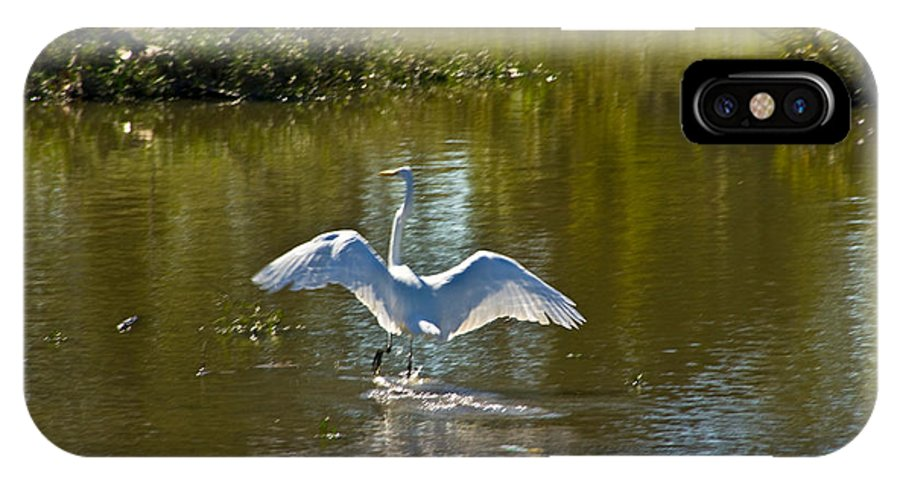 Tulsa Photographs IPhone X Case featuring the photograph Great White Egret In Sunlight by Vernis Maxwell