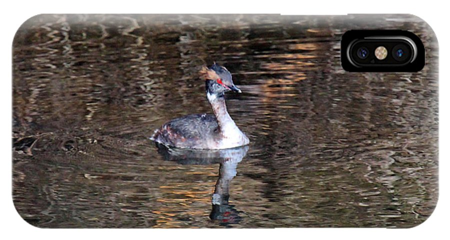 Horned Grebe IPhone X Case featuring the photograph Grebe Reflection by Rob Hawker