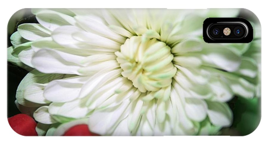 Flower IPhone X Case featuring the photograph Green Tiped by Eddie Miller