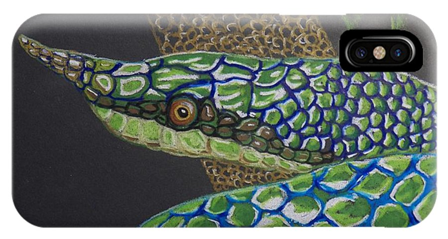 Green Tree Snake IPhone X Case featuring the painting Green Tree Snake by Richard Goohs