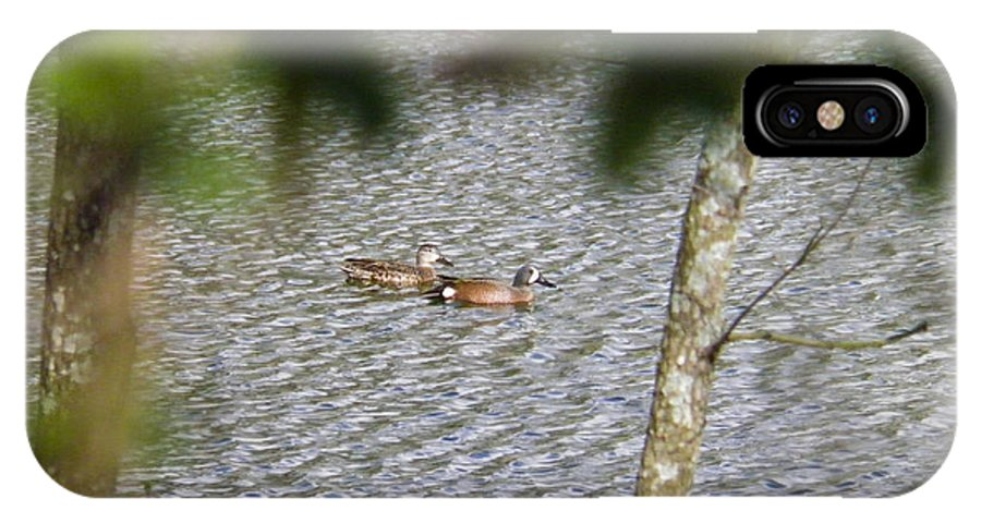 Ducks IPhone X Case featuring the photograph Green Winged Teal 2 by Nick Kirby