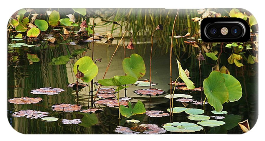 Greens IPhone X Case featuring the photograph Greens On A Pond 2 by Mark Steven Burhart