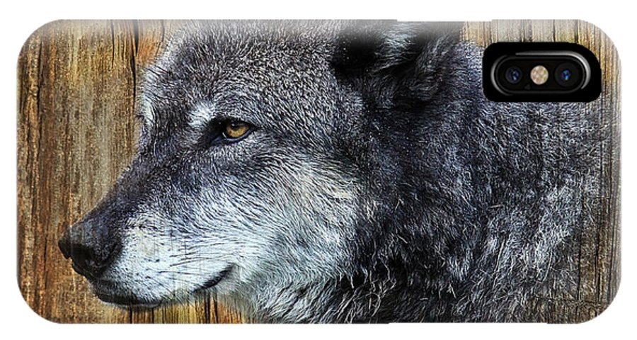 Wolf Art IPhone X Case featuring the photograph Grey Wolf On Wood by Steve McKinzie