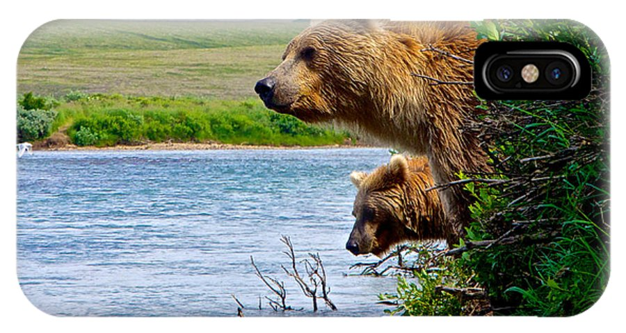 Grizzly Bears Peering Out Over Moraine River From Their Safe Island IPhone X Case featuring the photograph Grizzly Bears Peering Out Over Moraine River From Their Safe Island by Ruth Hager